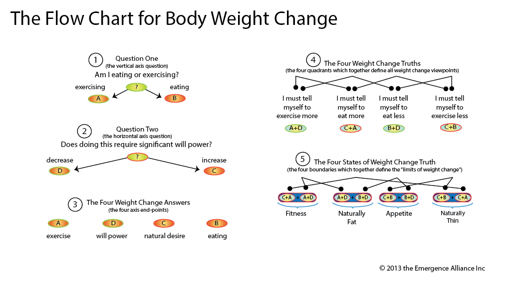 Flow Chart for Body Weight Change