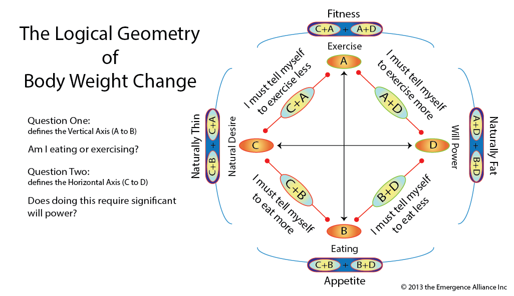 Logical Geometry of Body Weight Change